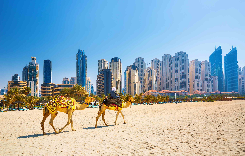 The Dubai Deals